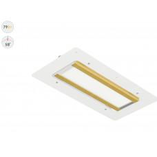 Светодиодный светильник Прожектор GOLD, для АЗС, 79 Вт, 58°