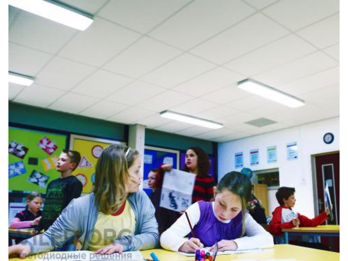 Особенности внутреннего освещения школ